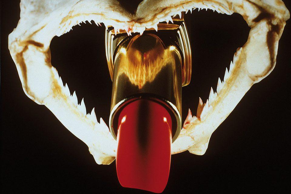 Fotografi som föreställer ett rött läppstift på väg ut ur munnen på ett hajkranium mot svart bakgrund.